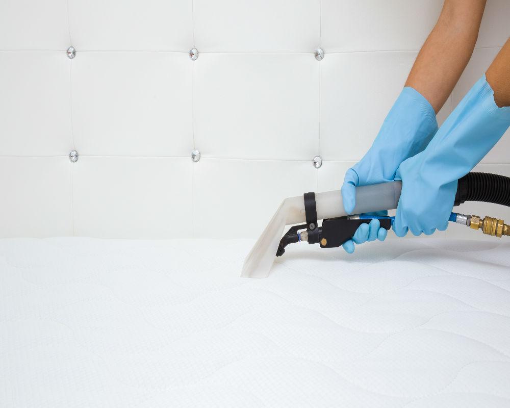 Empresa de higienização de colchão de casal TempoTem